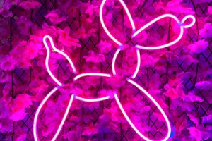 neon sign board  'Dog'  China NEW custom neon sign light for home,party,wedding,etc.