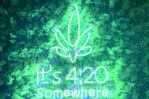 custom neon sign light 'it's 420 somewhere' leaf  China  neon led custom sign led neon light letters  custom made for party,home