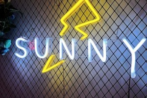 neon led sign custom SUNNY china neon sign for wedding- home decor-kids-birthday party-Custom Neon Sign for store