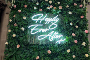 Happily ever afetr wedding decoration outdoor indoor acrylic led neon sign letters custom neon sign