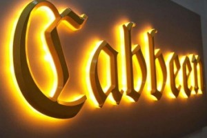 Customize Metal Face Lighted OEM LED Channel Letter for Outdoor Advertising Sign