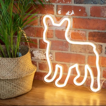 Guangzhou Home Decor Neon Lights For Rooms Acrylic Led Neon Sign