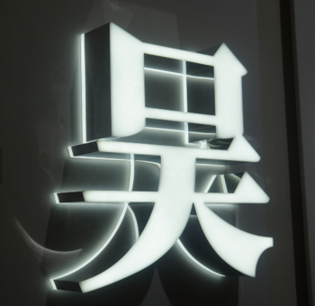 3D Illuminated Stainless Steel Led Sign Letters